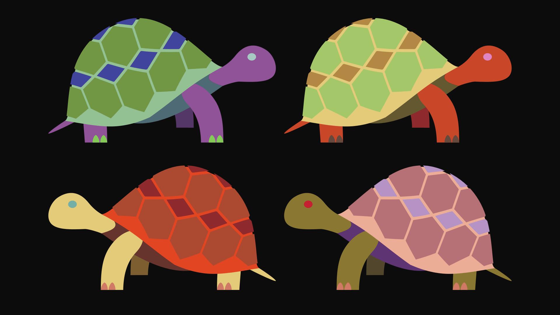 Schildpadden kinderen